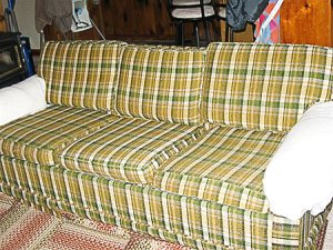 :what a gorgeous, scratchy-looking sofa:
